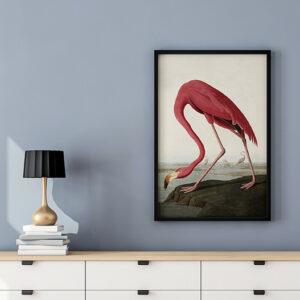 CopyNet_Flamingo.png